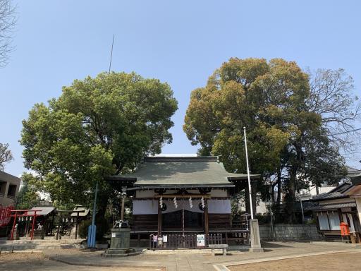 須賀神社(杉並区)