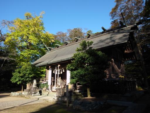 橘樹神社(茂原市)
