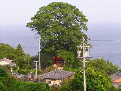 松葉山天満宮 (まつばやまてんま...