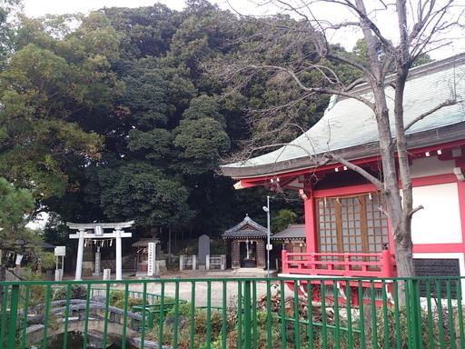 浅間神社(松戸市)