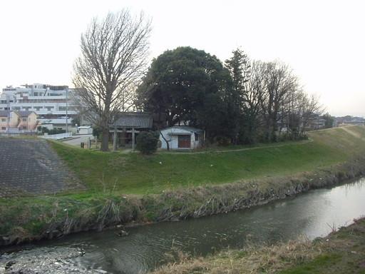 大杉神社(ふじみ野市)
